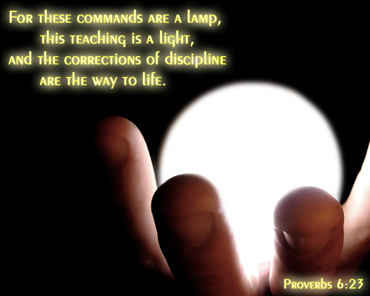 Jewish Quotes On Life Jewish Education  Torah Ideals